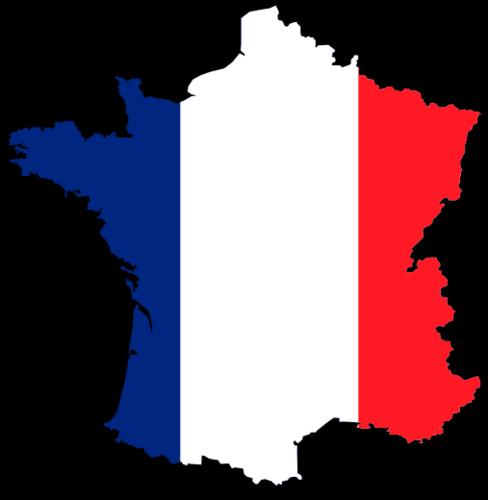 Surrogacy France